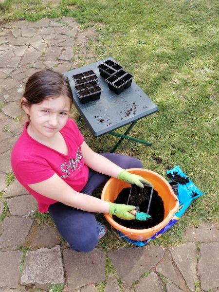 Lana-gardening